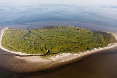 Insel Mellum