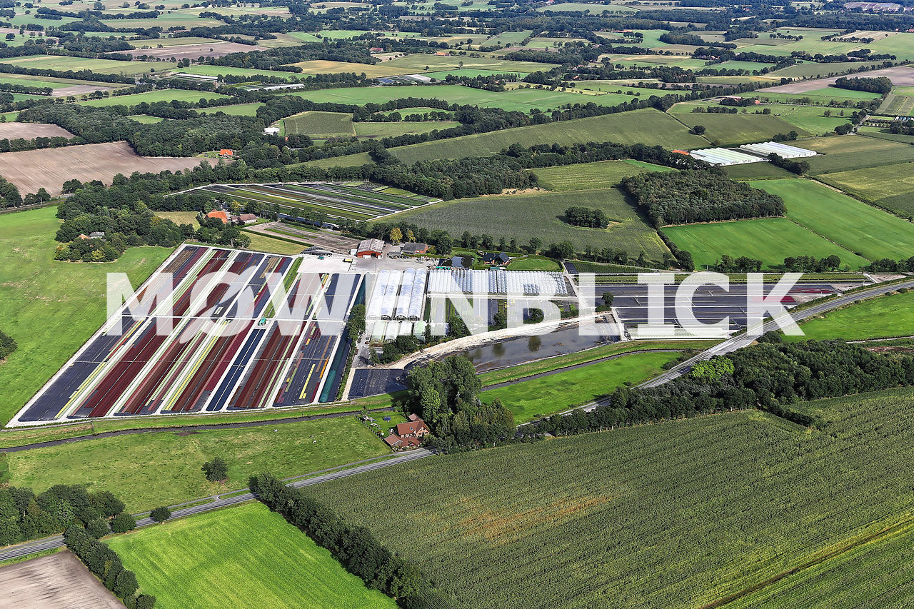 Delger Pflanzenhandel Luftbild
