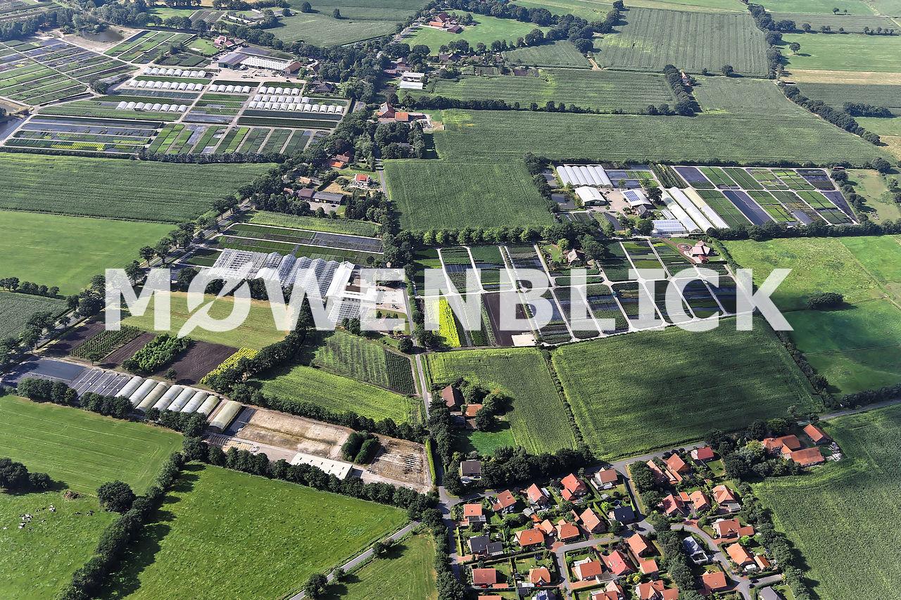 Westersteder Blumenhof Luftbild