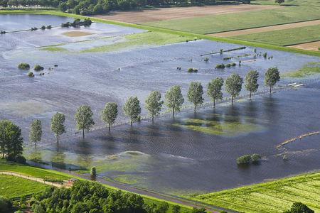 Luftaufnahme Allerüberschwemmung Kirchwahlingen