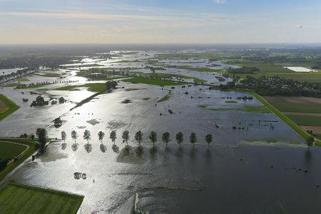 Luftaufnahme Wiesen bei Hochwasser