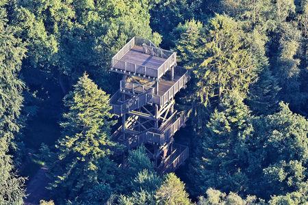 Luftaufnahme Wittmunder Wald