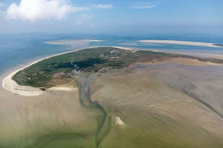 Luftaufnahme Vogelinsel