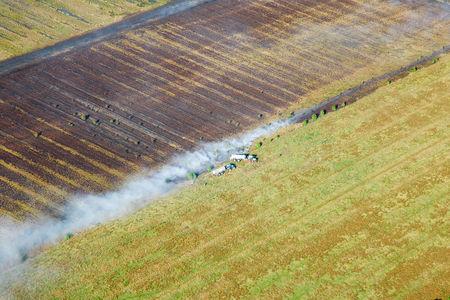 Luftaufnahme Geestland
