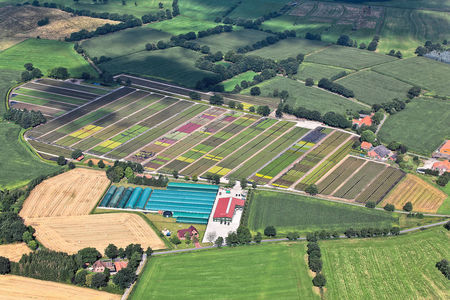 Luftaufnahme Gärtnerei