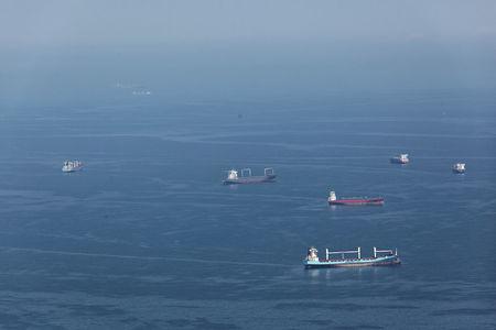 Luftaufnahme Schiffe auf Reede