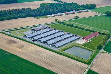 Luftaufnahme Landwirtschaftlich Stallanlagen