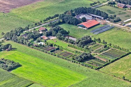 Luftaufnahme Baumschule