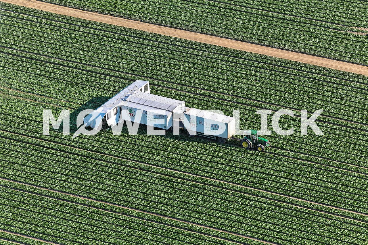 Mählmann Gemüsebau Luftbild