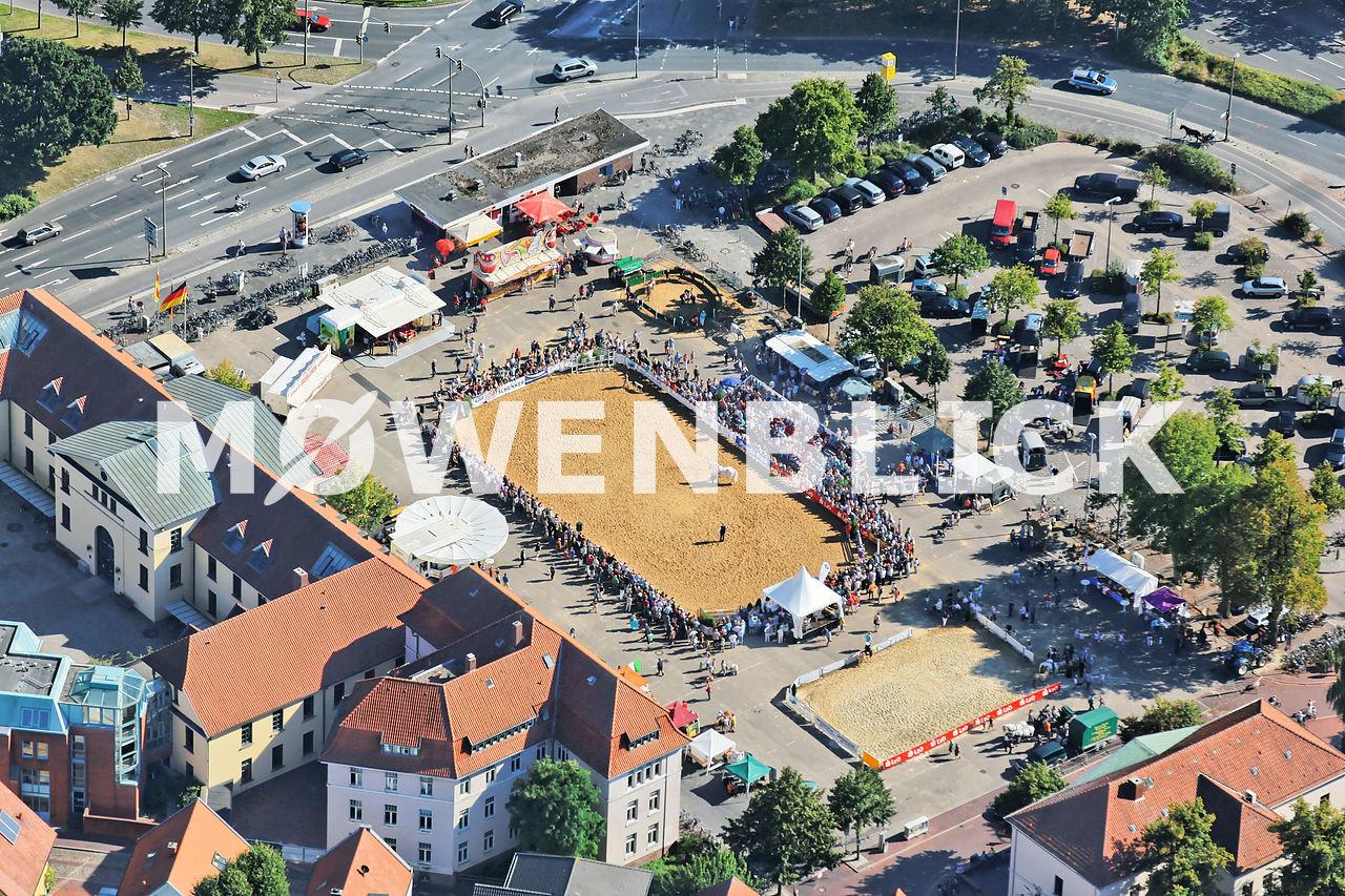 pferdemarkt oldenburg